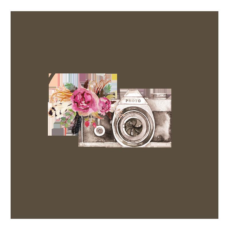Kathleen Chapman Photography