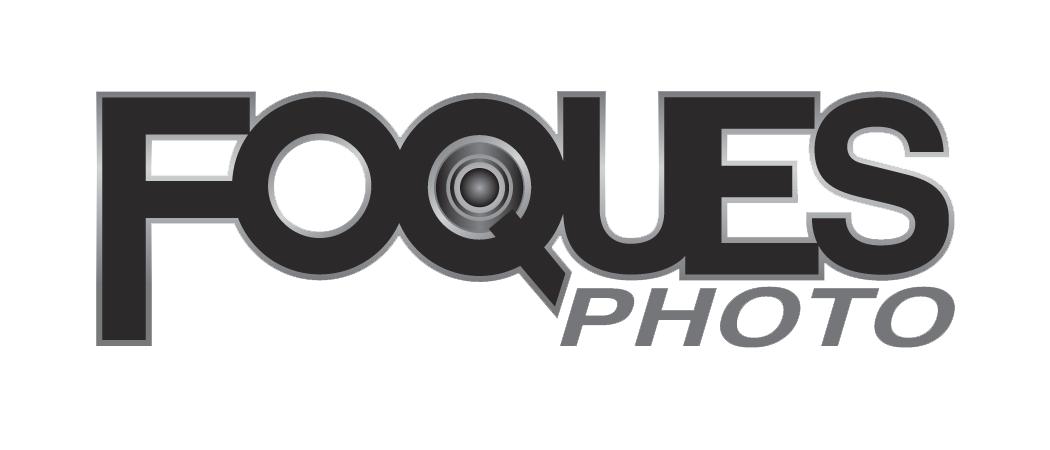 Foques Photo