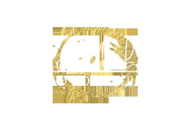 Theresa Elizabeth Photography