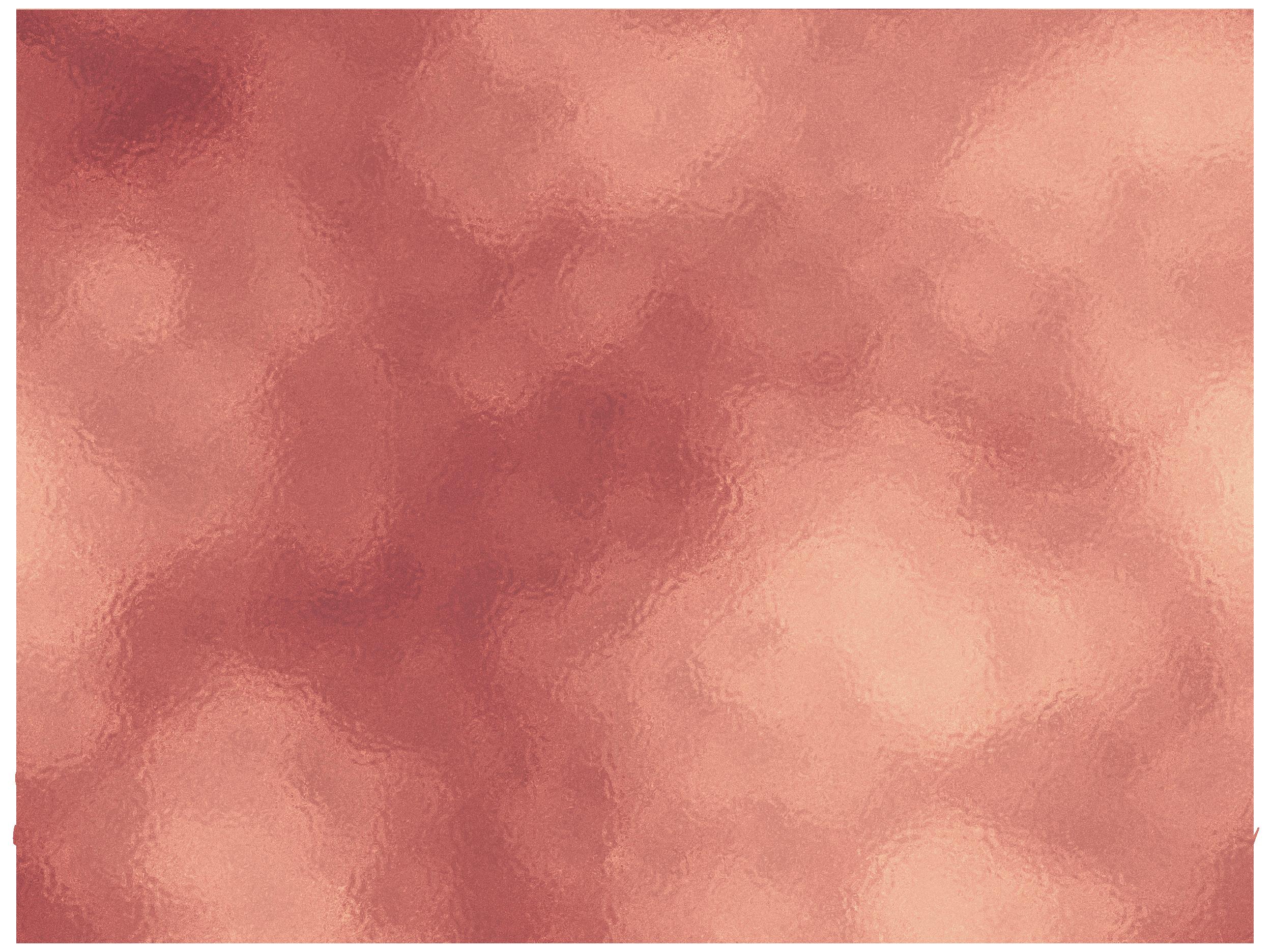 Samantha Bell Photography