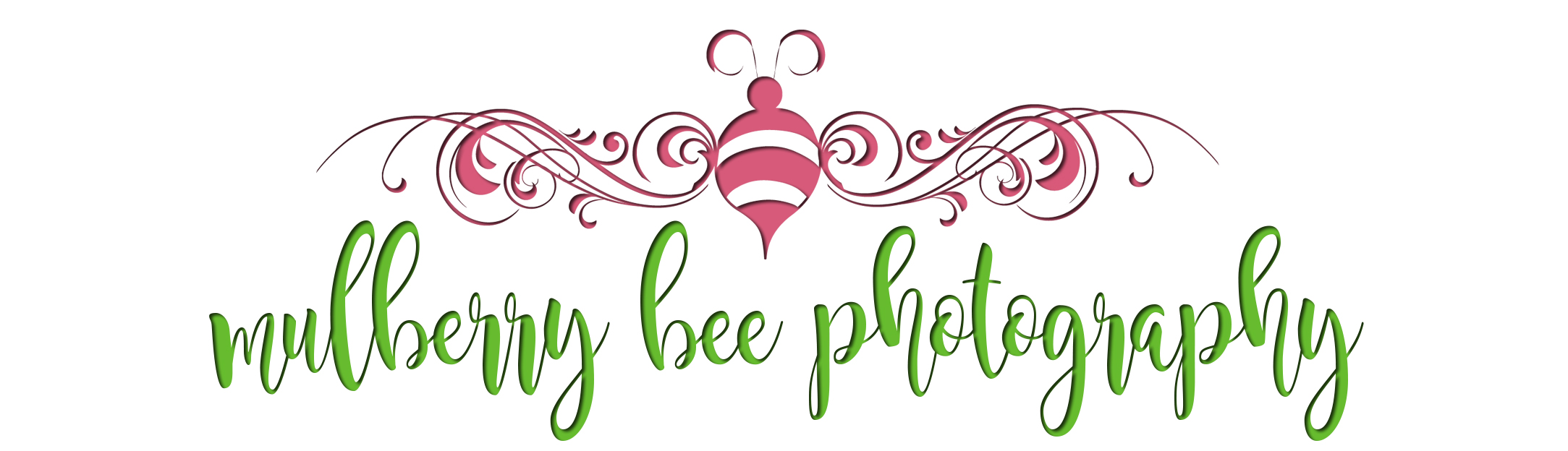 mulberry bee photography
