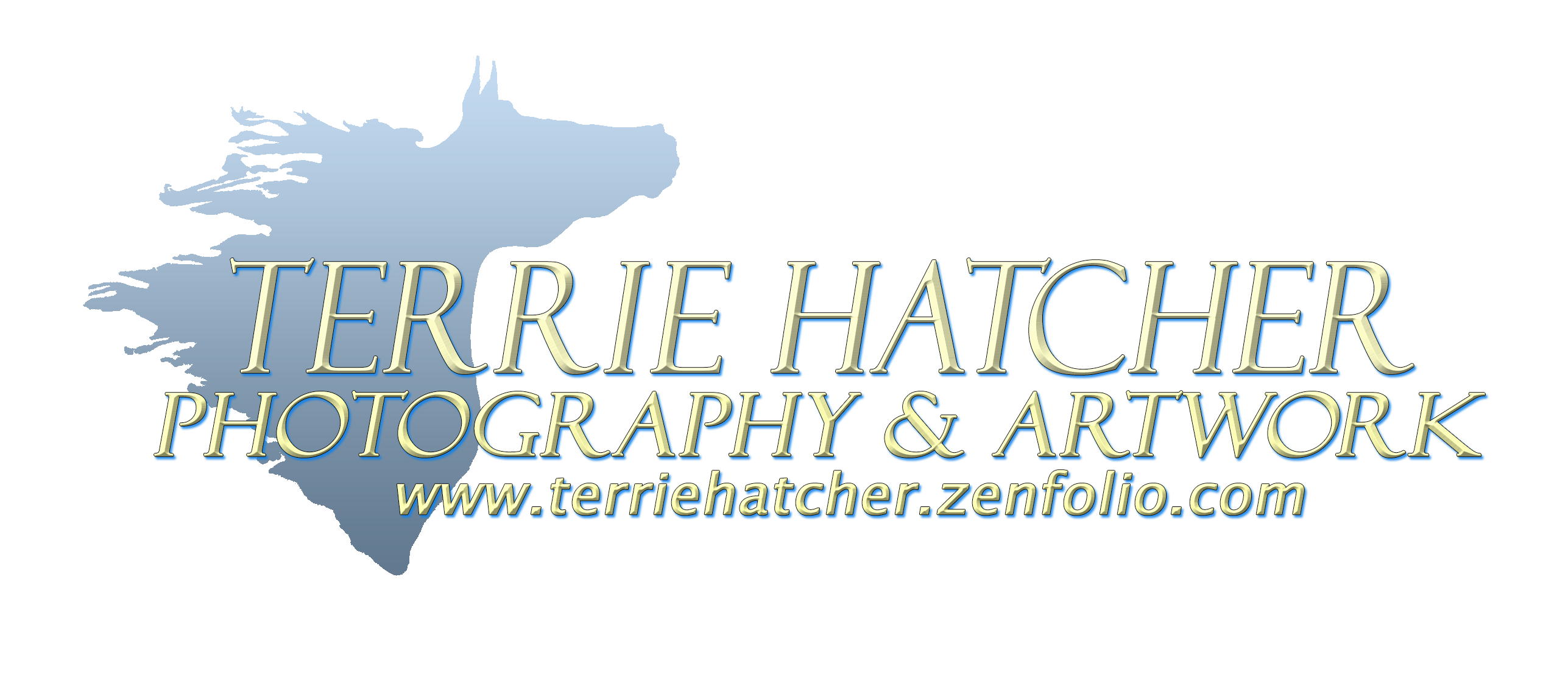 Terrie Hatcher Photography & Artwork