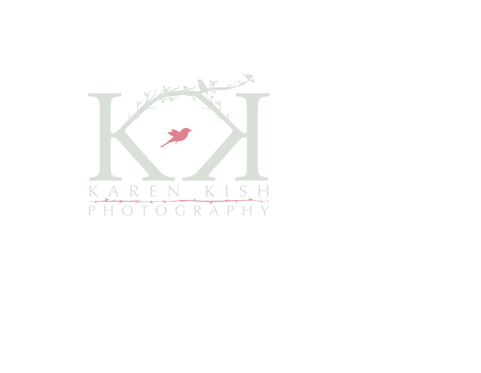 Karen Kish Photography in Metro Detroit and Michigan