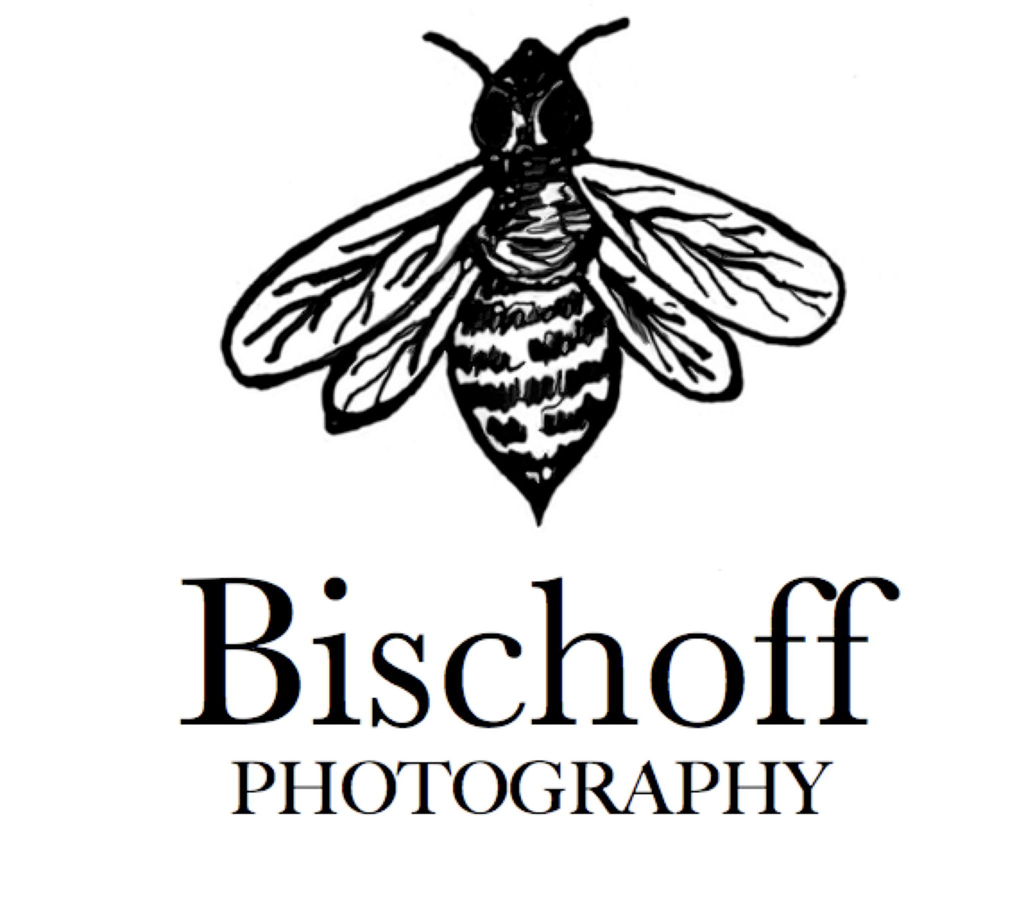 Bischoff Photography