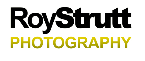 Roy Strutt Photography