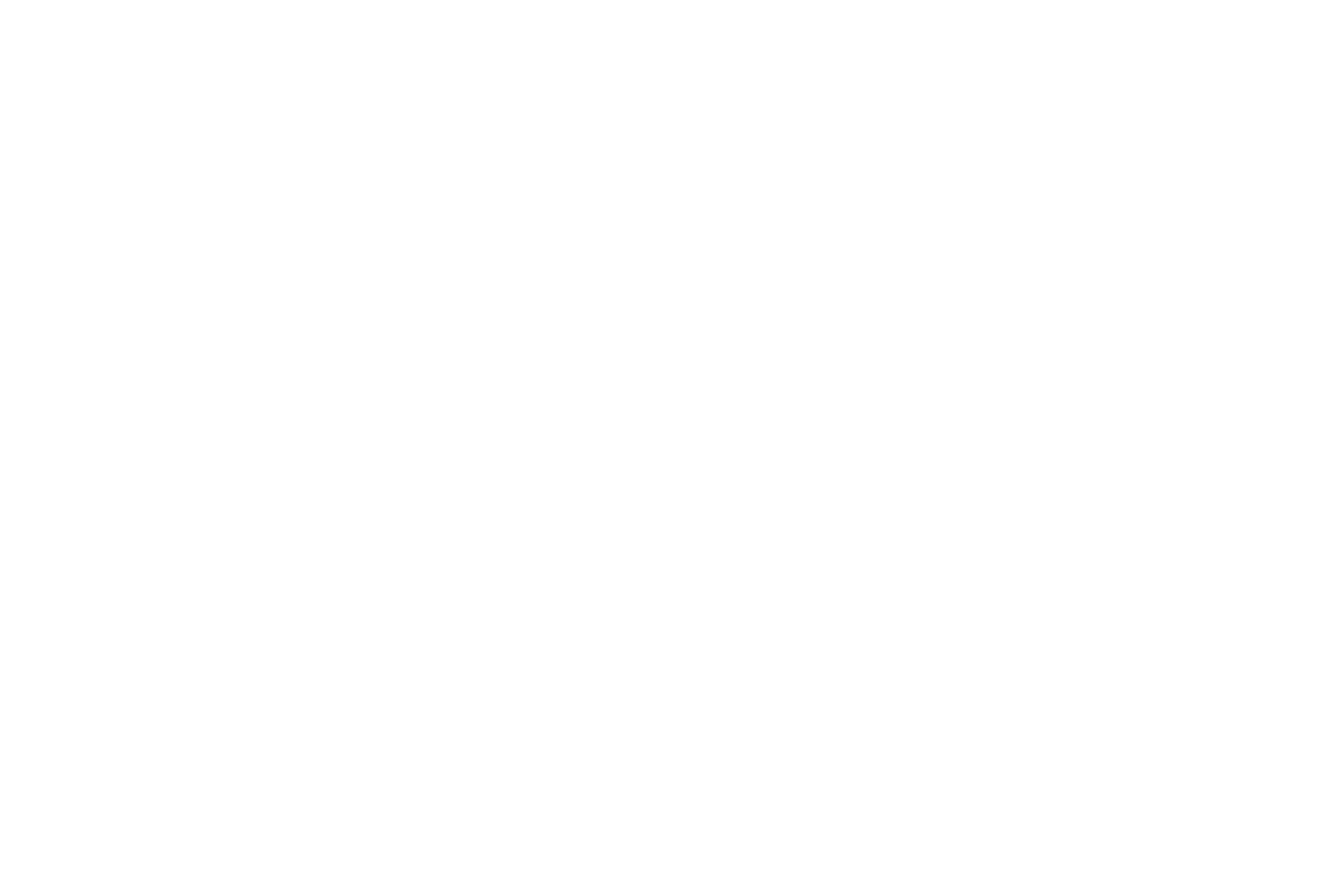 Brittany Nicole Photography