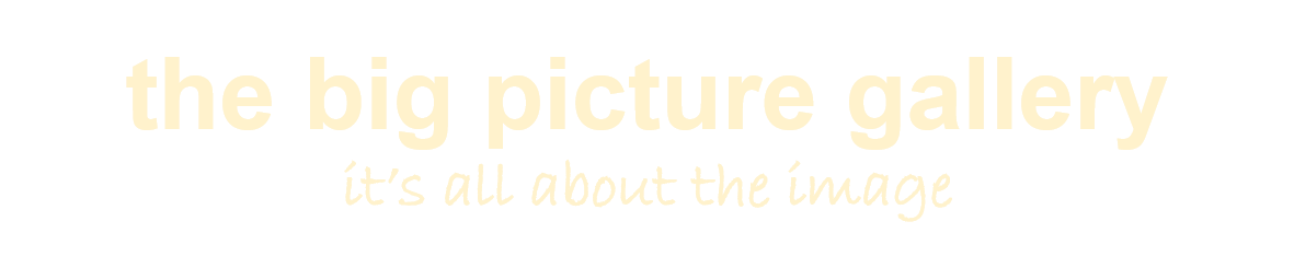 the big picture gallery